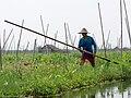 Inle Lake, Myanmar (10543657025).jpg