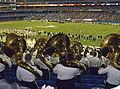 International Bowl 027.jpg