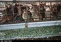 Iran 1395 Coturnix 4.jpg