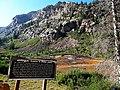 Iron Bog - panoramio.jpg