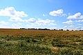 Iskitimsky District, Novosibirsk Oblast, Russia - panoramio (29).jpg