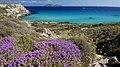 Isole egadi sicily boboviel favignana marettimo levanzo (30).jpg