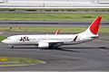 JAL B737-800(JA313J) (3858905239).jpg