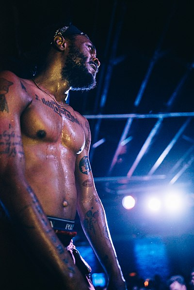 Picture of a band or musician: Jpegmafia