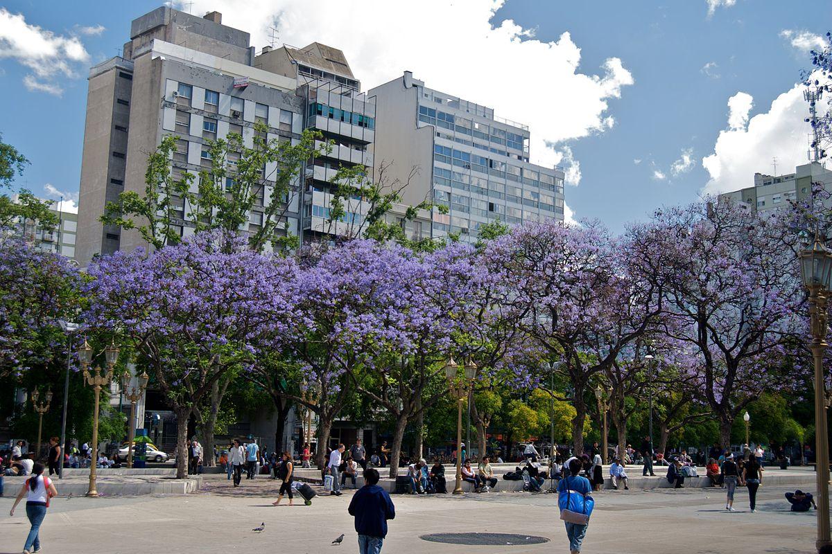 Reforma  Mexico City Shopping