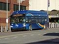 Jamaica Ctr Bus Term td (2019-01-13) 11a.jpg