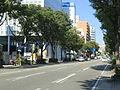 Japan National Route 202 Reisen machi.JPG