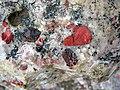 Jasper pebbles in quartzite (Lorrain Formation, Paleoproterozoic, ~2.3 Ga; Ottertail Lake Northeast roadcut, near Bruce Mines, Ontario, Canada) 33 (47656144202).jpg