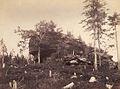 Jindrich Eckert - Skalni partie (1880-2).jpg