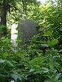 Juedischer Friedhof Waehring - Epstein.jpg