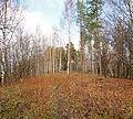 Jyväskylä - trail.jpg