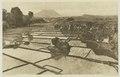 KITLV - 26877 - Kleingrothe, C.J. - Medan - Paddy field near Rakut Besi in the Batak - circa 1905.tif
