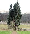 Kartause Freiburg Garten mit Tor.jpg