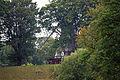 Kastellet windmill - greenery.jpg