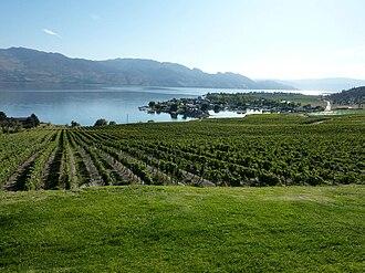 Okanagan Valley (wine region) - Image: Kelowna Vineyard overlooking Okanagan Lake