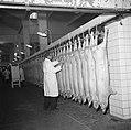 Keuring van het vlees aan de slachtlijn van de vleeshallen in het deel waar vark, Bestanddeelnr 252-9056.jpg