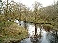 Kilmartin River in woodland - geograph.org.uk - 144975.jpg