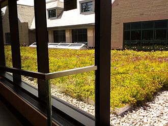 King's University College (University of Western Ontario) - Green roof atop the Darryl J. King Student Life Centre.