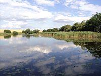 Kleiner See, Blankenhof.jpg