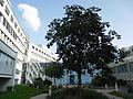 Klinikum Nürnberg Nord Juli 2012 004.JPG