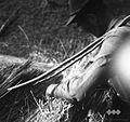 Krovec Jože Korelc nalaga škup pod prekeljco 1964.jpg