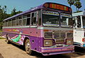 LANKA ASHOK LEYLAND PUBLIC BUSSES AT GALLE SRI LANKA JAN 2013 (8554624692).jpg