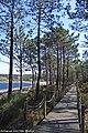 Lagoa da Ervedeira - Portugal (19435840721).jpg