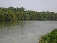 Lake Bruin in Newellton IMG 1270