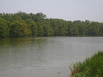 Tensas Parish, Louisiana - Lake St. Joseph, an ox-bow lake of the Mississippi River at Newellton
