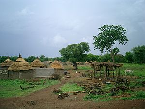 Wildlife of Burkina Faso - Landscape at Lalgaye