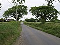 Lane near Punchardon - geograph.org.uk - 453733.jpg