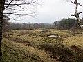 Laymoor Quag from the railway embankment- March 2013 - panoramio.jpg