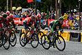 Le Tour de France 2015 Stage 21 (19560139493).jpg