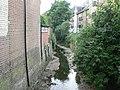 Lee, Quaggy River - geograph.org.uk - 865318.jpg