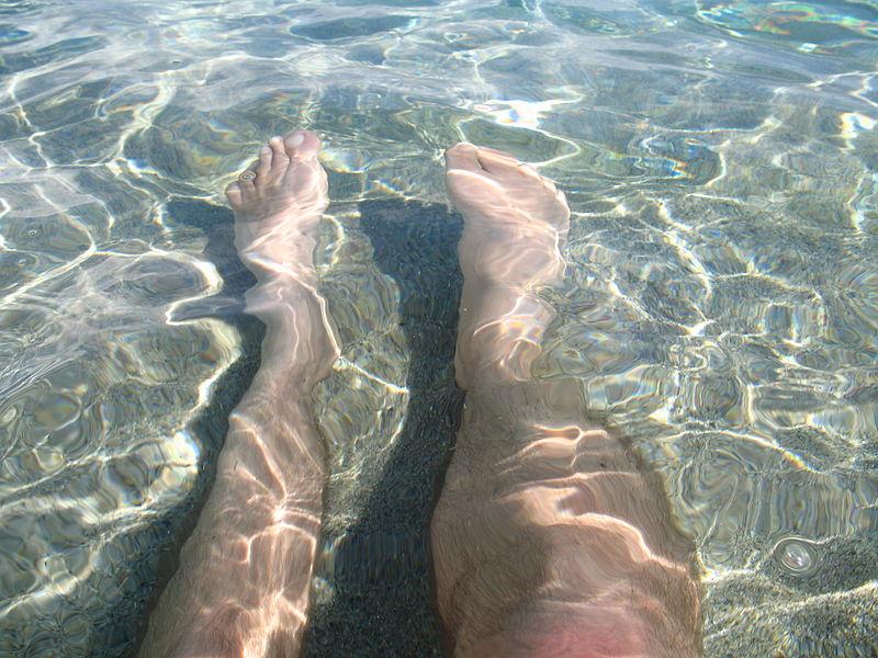 File:Legs (2914966343).jpg