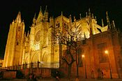 Leon cathedral side tree night.jpg