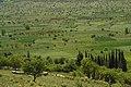 Levidi-Ebene Arcadia Peloponnes.jpg