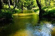 """Lidzbark Warmiński, rzeka Symsarna. Okolice ośrodka wypoczynkowego """"Zacisze"""" - panoramio.jpg"""