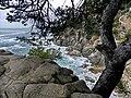 Lloret de Mar - panoramio (87).jpg