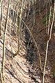 Loewenstein Sauklinge 20070414 1.jpg