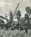 Logging in Morotai, Indonesia Tanah Airku, p48.jpg