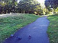 London, Woolwich, Shrewsbury Park01.jpg
