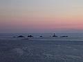 Longships Lighthouse at dusk - geograph.org.uk - 41082.jpg