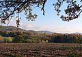 Looking across Cradley fields to Malvern Hills - Flickr - gailhampshire.jpg