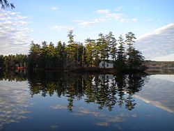 A clear view of Loon Island on a calm day on Forest Lake