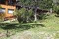 Los Lagos Department, Neuquen, Argentina - panoramio (36).jpg