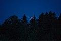 Lunar Eclipse 2018 SG 003 (28804400147).jpg