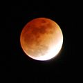 Lunar Eclipse Feb 20 2008 By Andrew Mussey2.jpg