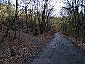 Máslovice, silnice 2428 a odbočení Máslovické stezky.jpg