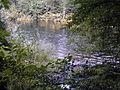 Mündung Lohbach.jpg